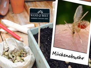 Insektenabwehr ohne Chemie