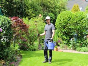 Rasenpflege nach großer Trockenheit