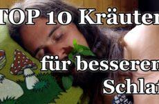 10 natürliche Schlafmittel (Kräuter)