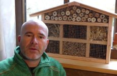 Insektenhotel selbst bauen
